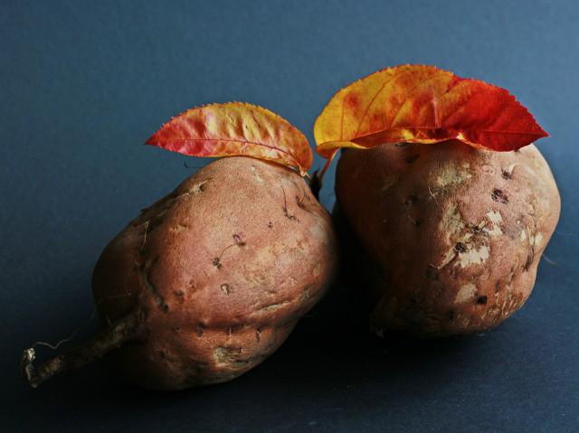 sweet-potato-534874_960_720.jpg